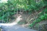 前面道路を含む現地写真