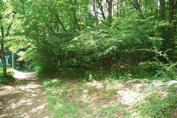 泉の森別荘地